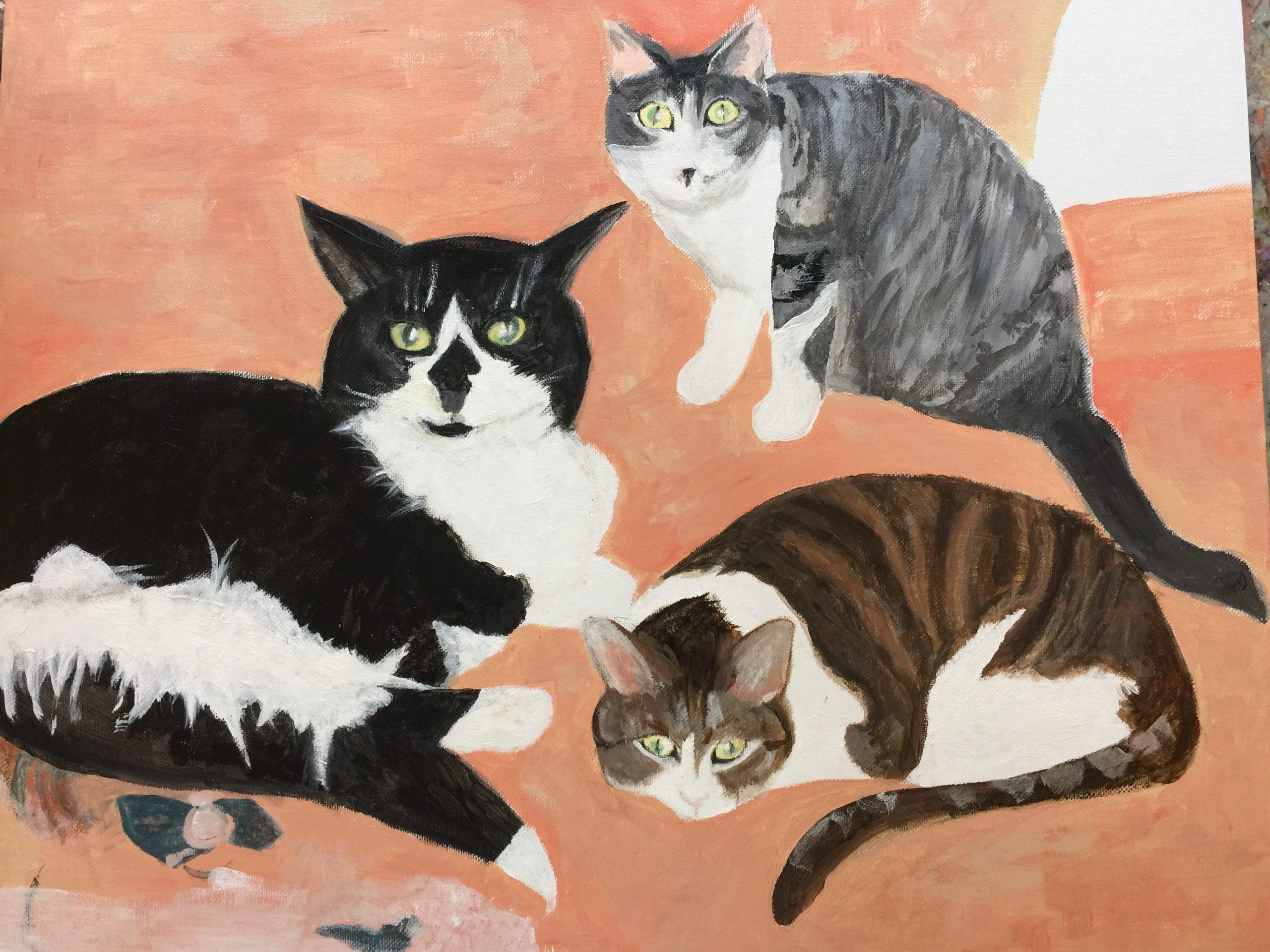 DAN'S CATS